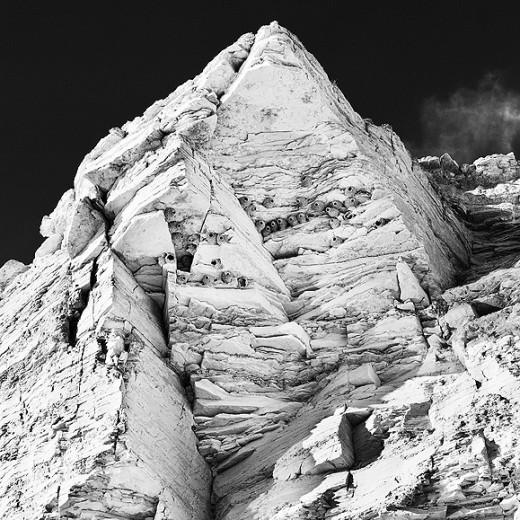 cliff_swallow_nests_Terlingua_Tx