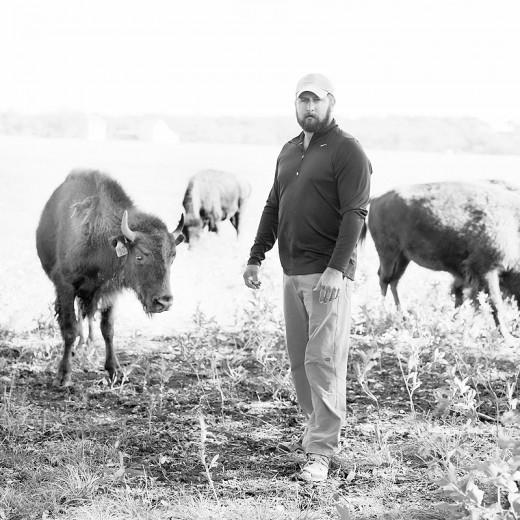 buffalo02